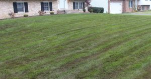 Top Dressing Services Austin, TX